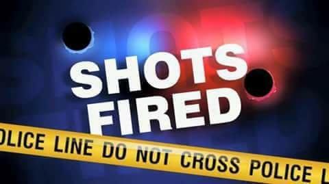 Shots Fired!